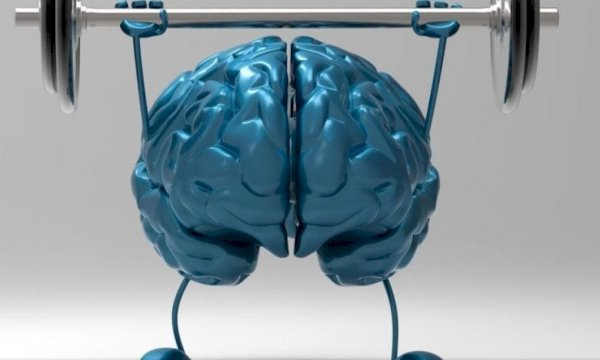 Quel sport contre la maladie d'Alzheimer ?